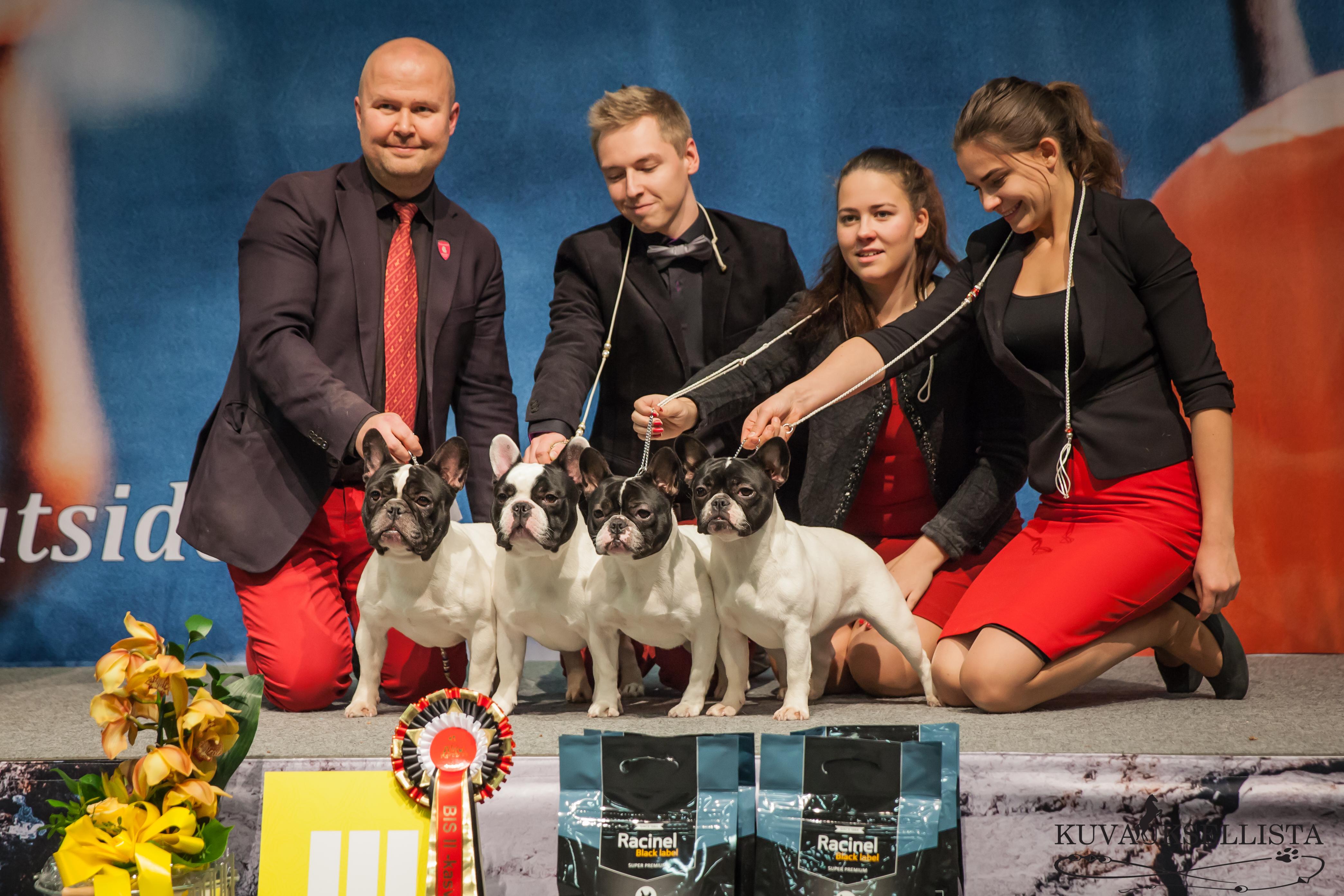 Jyväskylä 2016-11-13 breeder Mikko